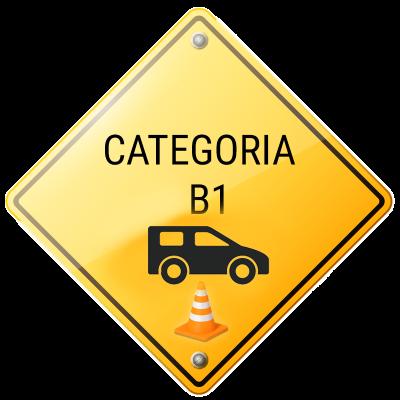 cat B1